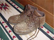 Leather Shoes Ruined by Mold in a Winnipeg Basement